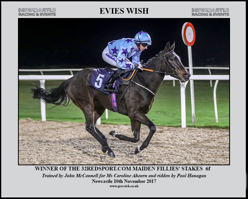 Evies Wish winning November 2017
