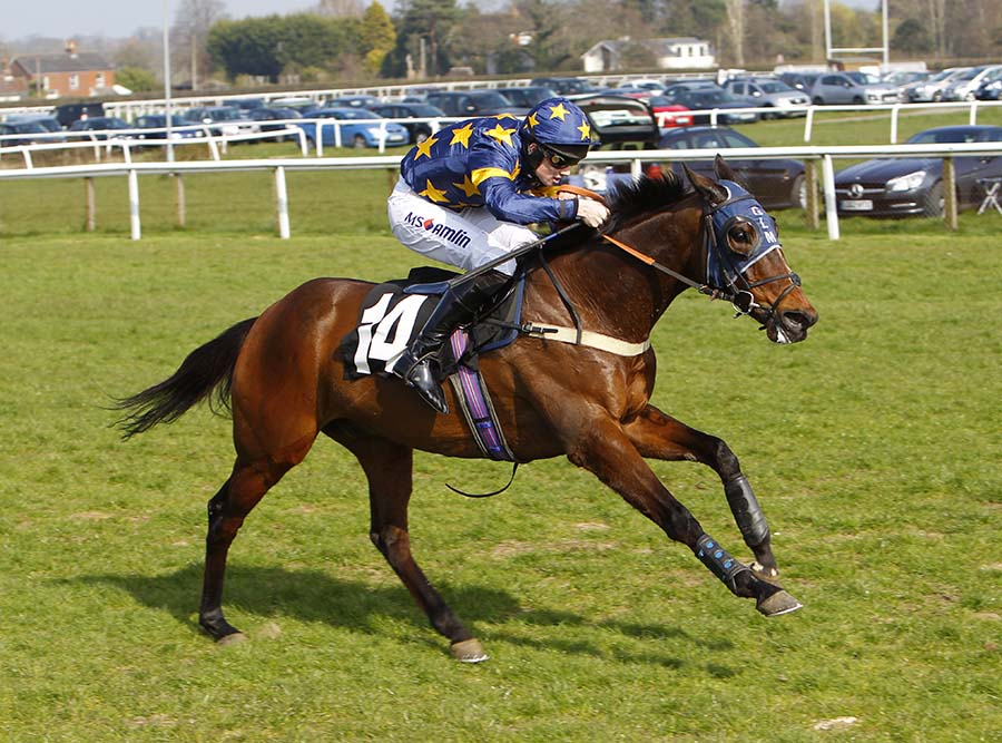 Mr Fickle winning at Plumpton